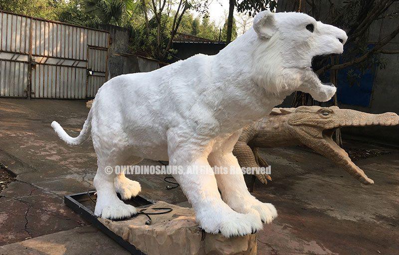 Fur-Grafting of Tiger Model
