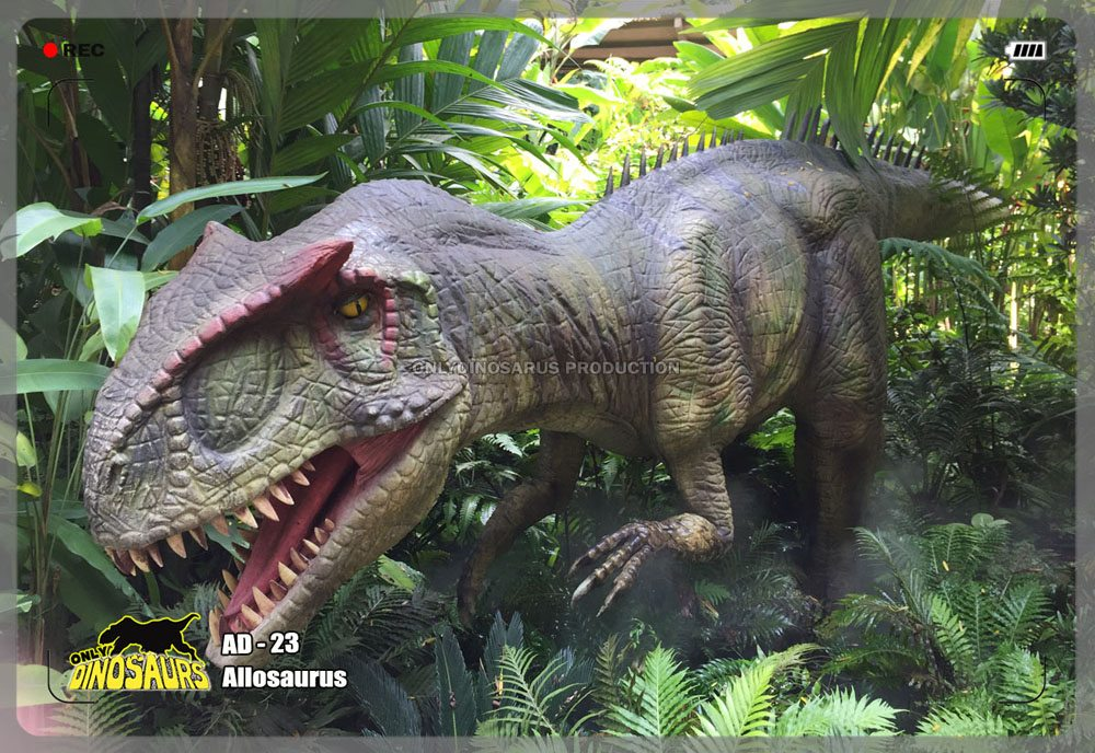 Lifelike Allosaurus Model