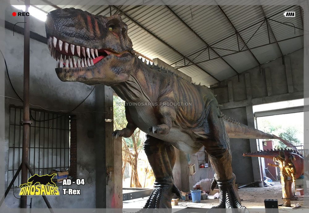 Animatronic T-Rex Model