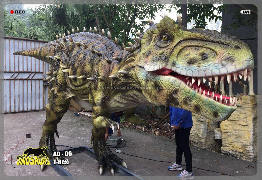 Lifelike T-Rex Model