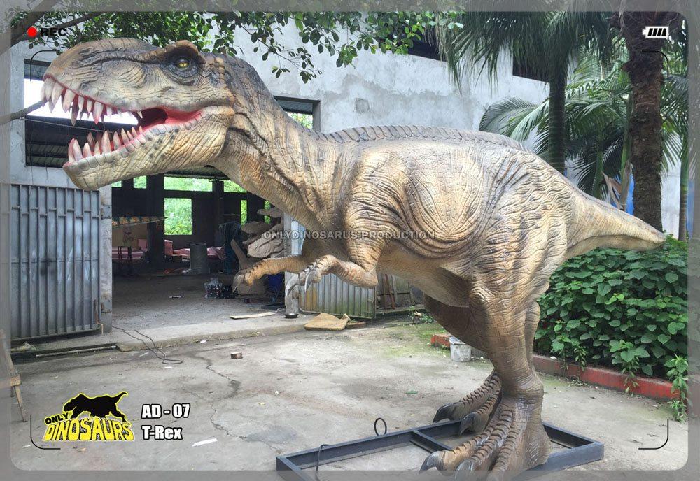 Life Size T-Rex Model