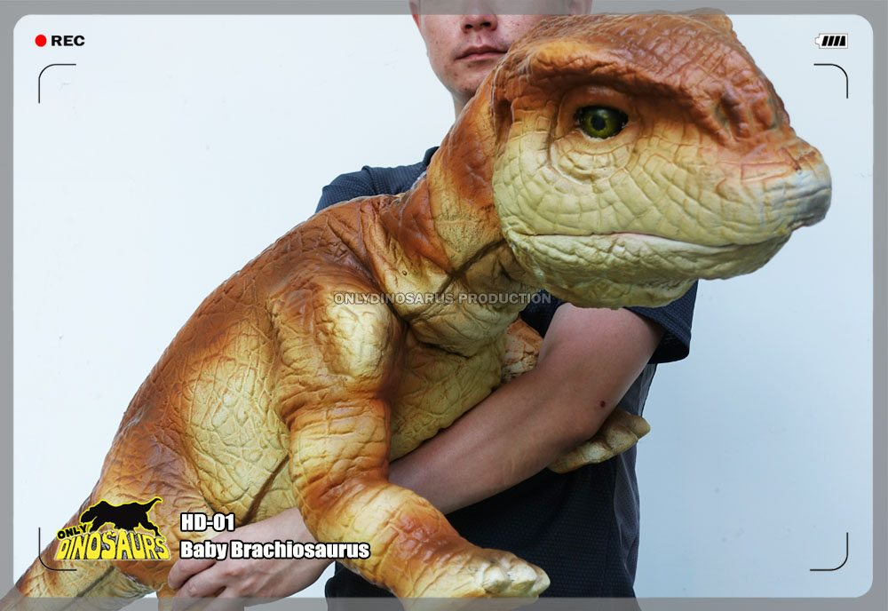 Baby Brachiosaurus Puppet