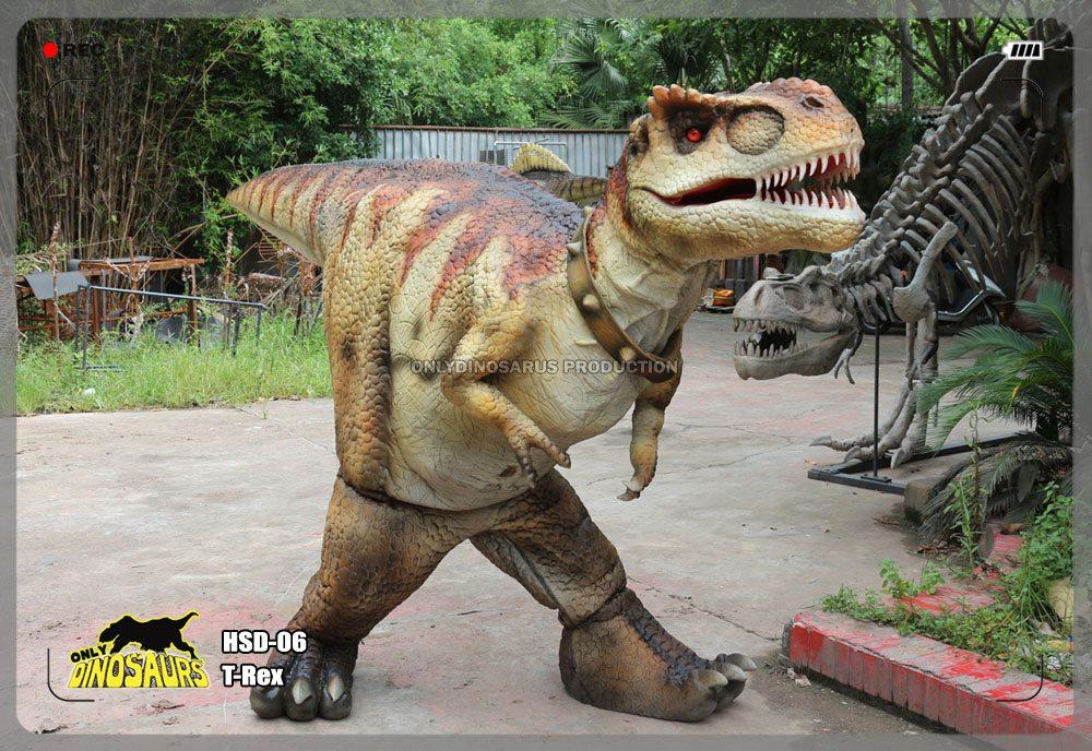 Hidden Legs T-Rex Outfit