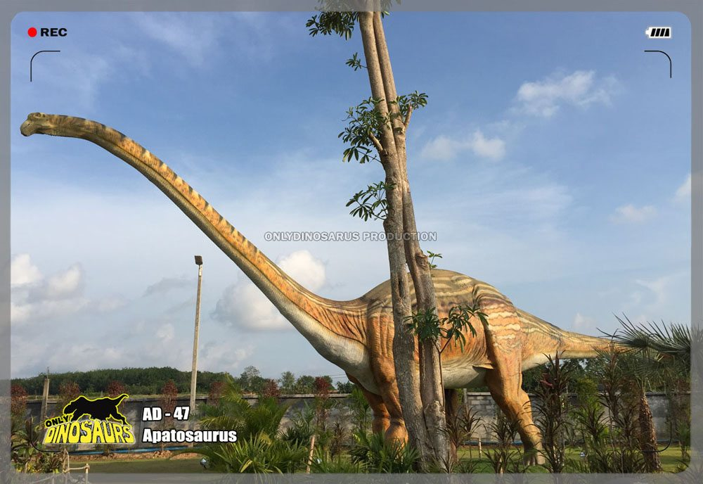 Huge Animatronic Apatosaurus Model