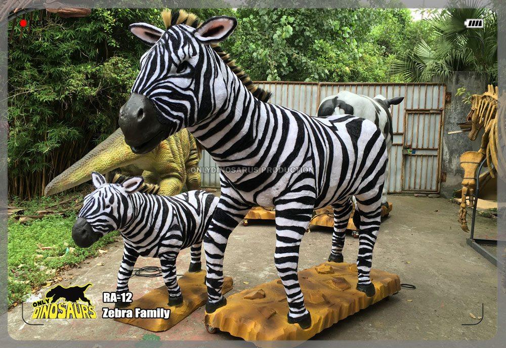 Zebra Family Model