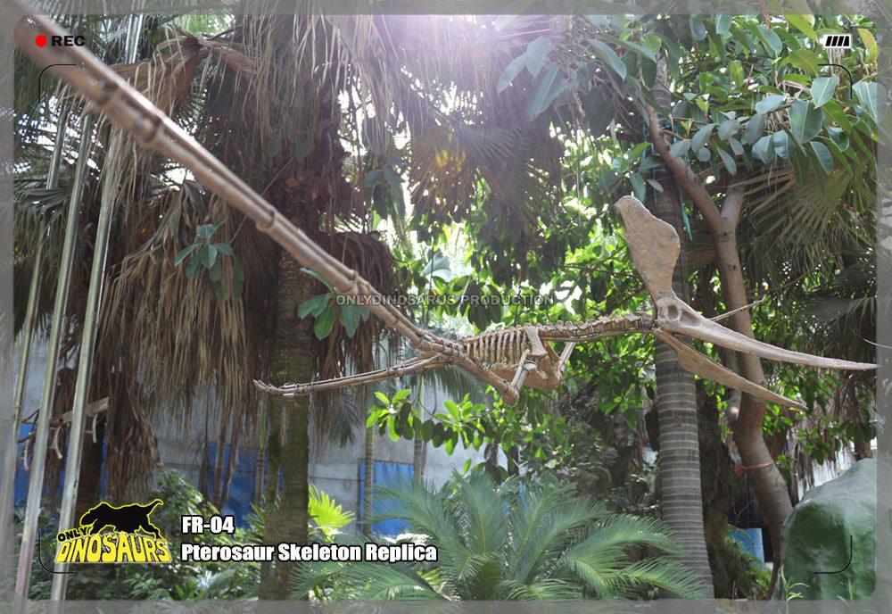 Pterosaur Skeleton Replica Replica