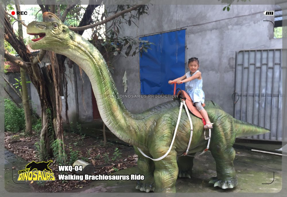 Walking Animatronic Brachiosaurus Ride