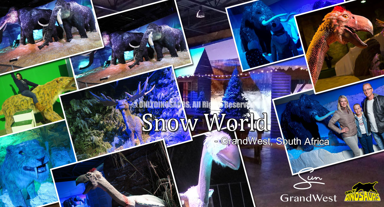 Snow World at GrandWest South Africa