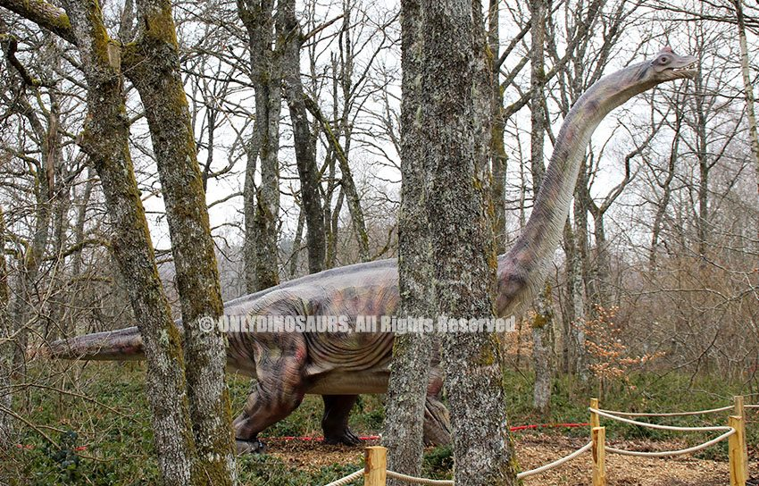 Brachiosaurus Model as Forest Decoration