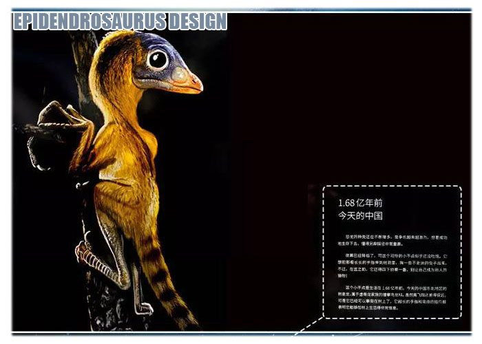Epidendrosaurus Design