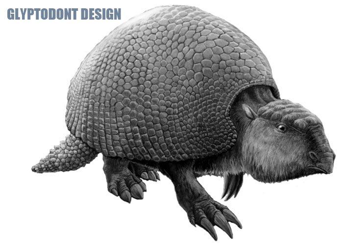 Glyptodont Design
