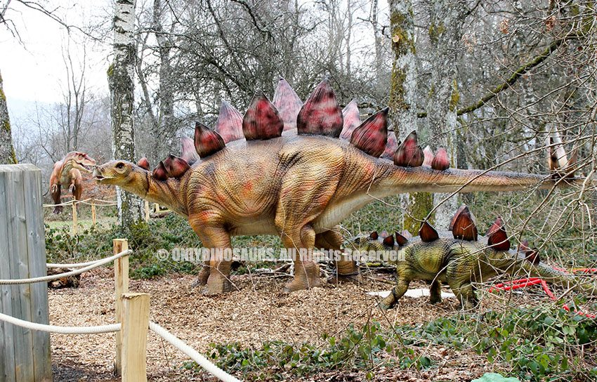 Stegosaurus Model as Forest Decoration