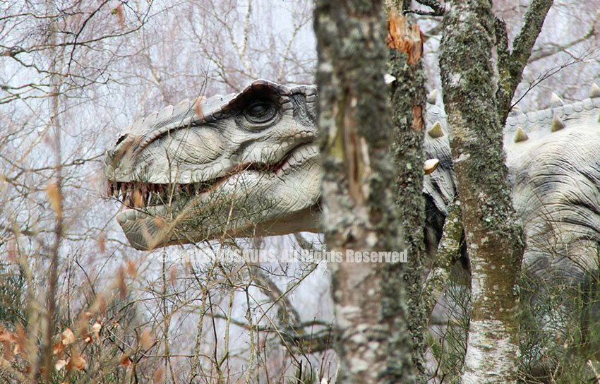 T-Rex Model as Forest Decoration