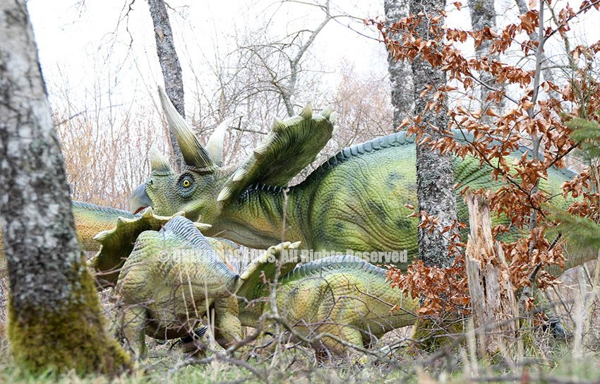 Triceratops Model as Forest Decoration