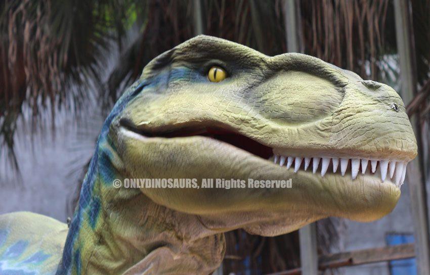 Custom Raptor Costume