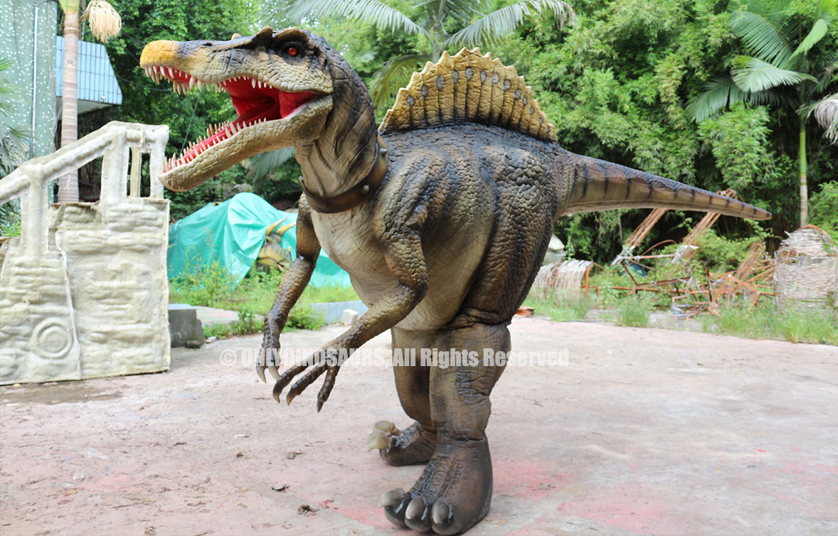 Hidden Legs Spinosaurus Costume for Sale