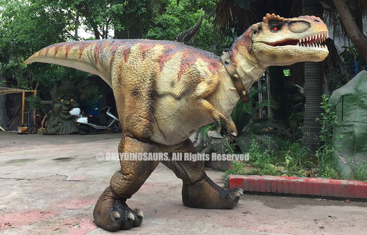 Hidden Legs T-Rex Suit for Sale