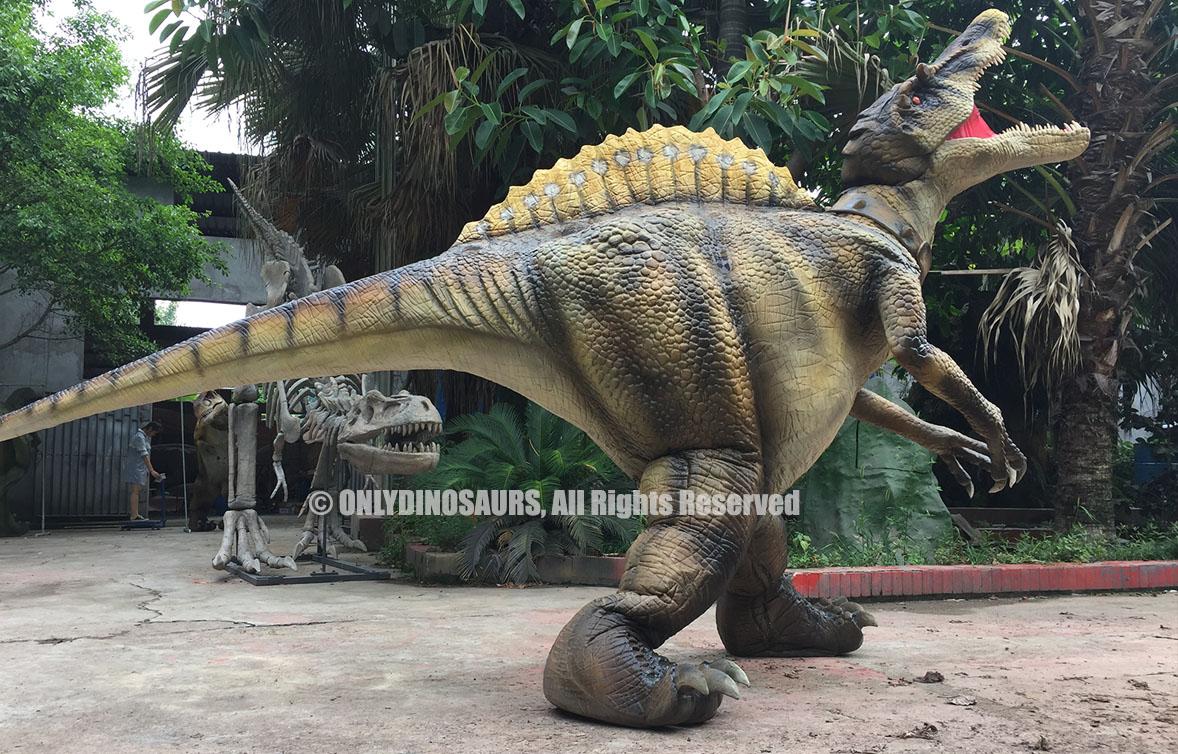 Spinosaurus Suit on Sale