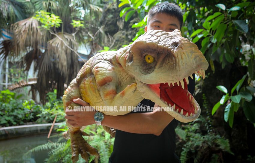 Realistic T-Rex Hand Puppet