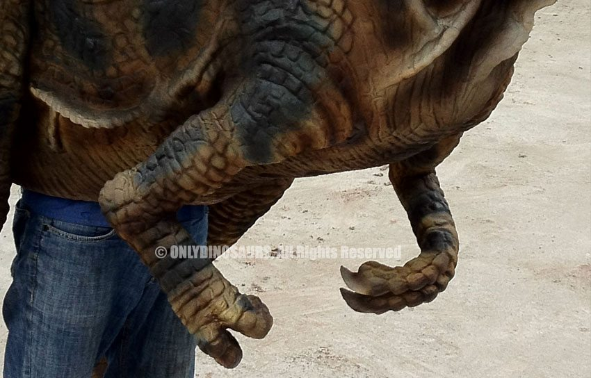 T-Rex-Costume-Claws