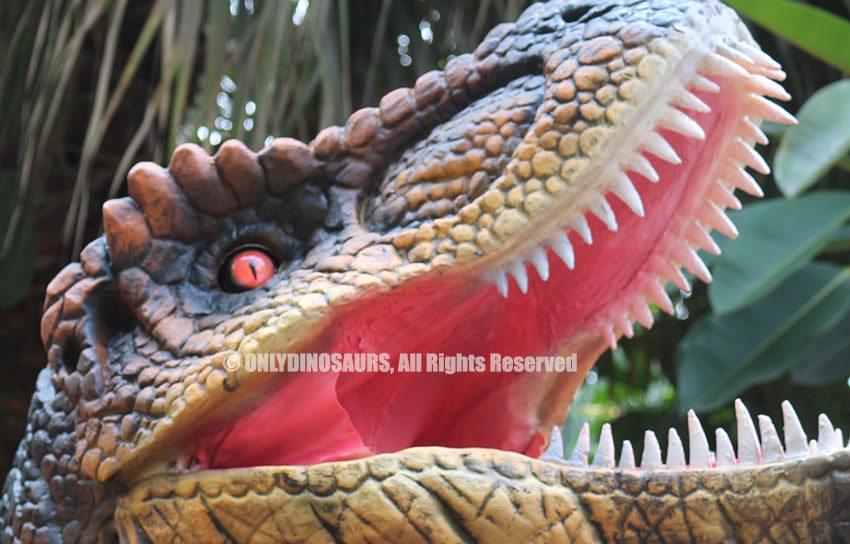 T-Rex Red Eyes Balls