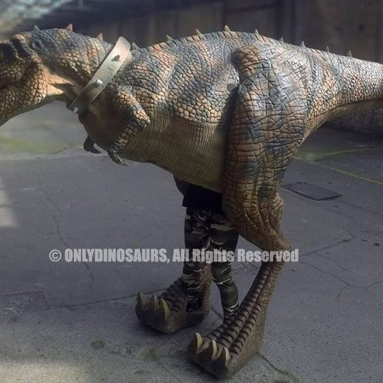 Tyrannosaurus-Rex-Costume-for-Sale