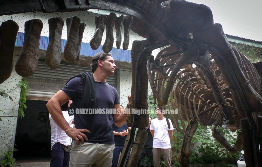 Italy-Clients-Finalize-Animatronic-Dinosaurs-Order