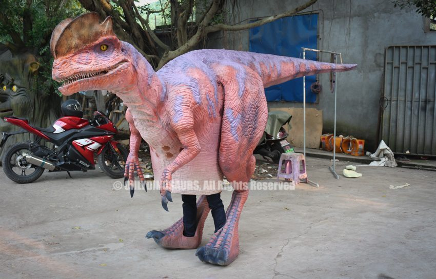Cartoon Dilophosaurus Costume out of factory