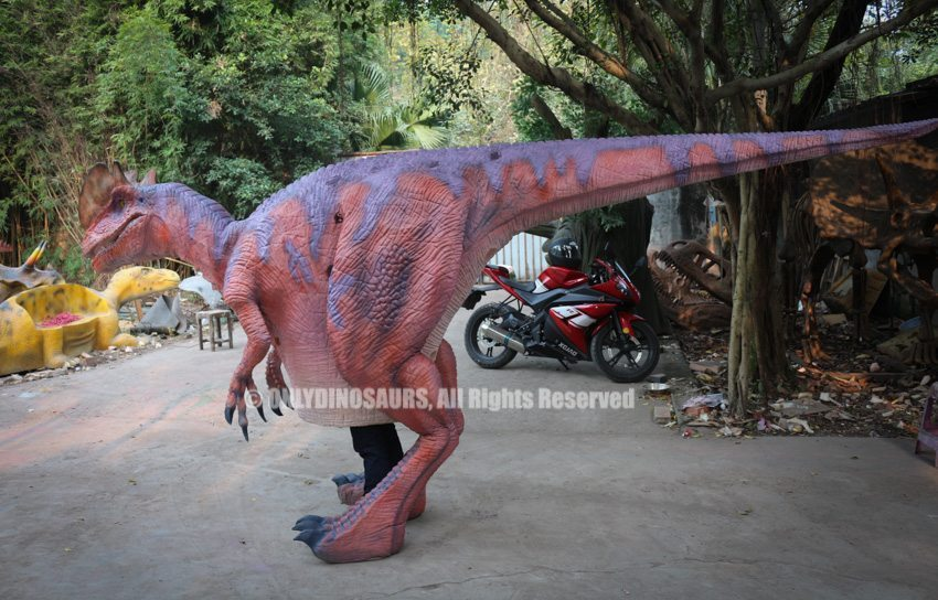 Cartoon Dilophosaurus Suit for Sale