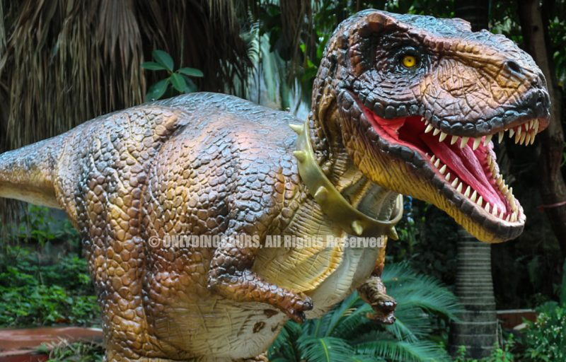 Realistic Tyrannosaurus Rex Suit for Adult